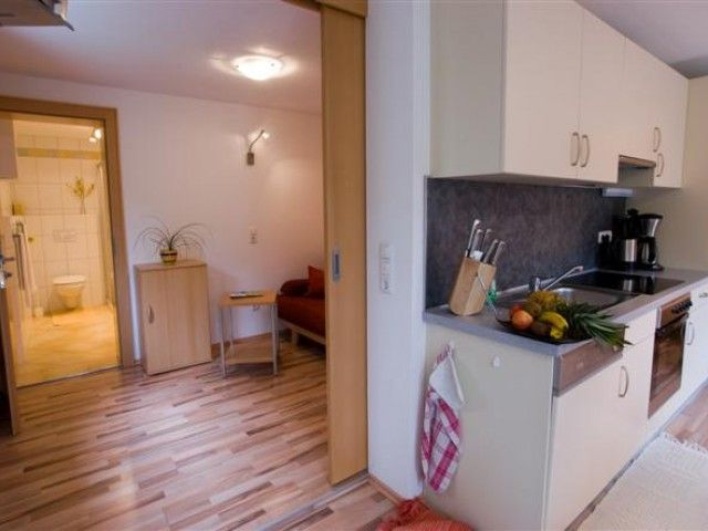 Appartement Christine in Fieberbrunn Tirol