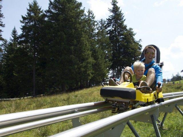Alm Coaster - Timok´s Alm Streuböden Fieberbrunn