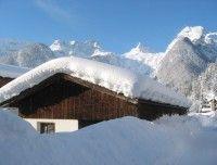 steinberg-winter1.jpg