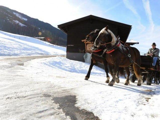 urlaub-winter-bauernhof-1.jpg