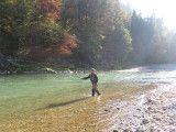 Fliegenfischen Österreich