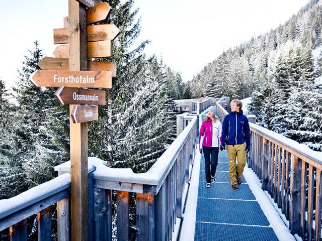 Winterferien in Saalbach am Bauernhof