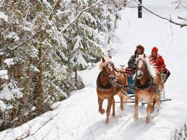 pferdschlittenfahrt-von-altenmarkt-nach-zauchensee