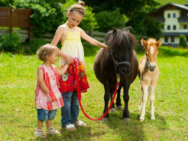 roselehnen-pferd-mit-kinder