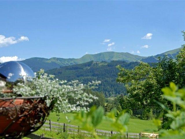 Gartenblick_Berg.jpg