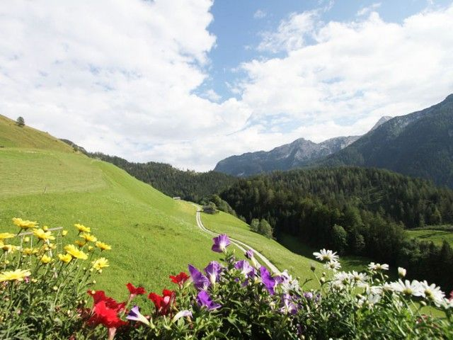 Bergpanorama beim Asenbauer