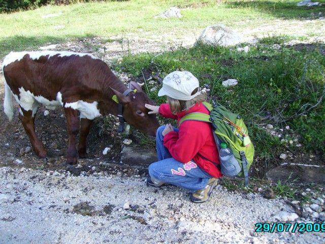 Bergurlaub am Bauernhof in Teisendorf