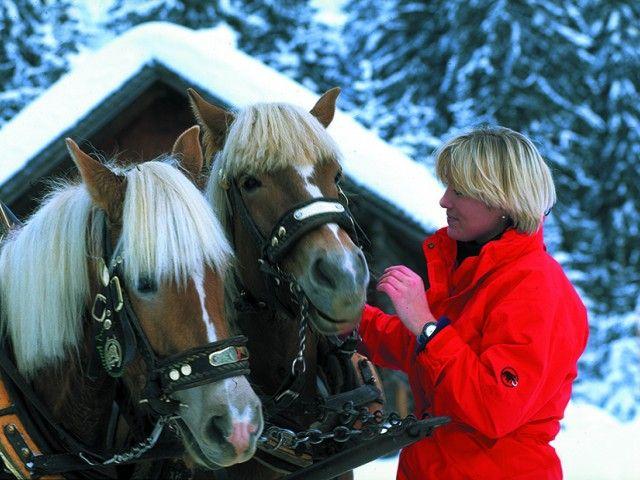 Pferdekutschenfahrt Leogang