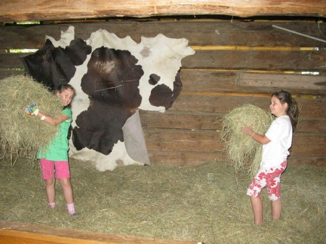 Bauernhofurlaub Leogang